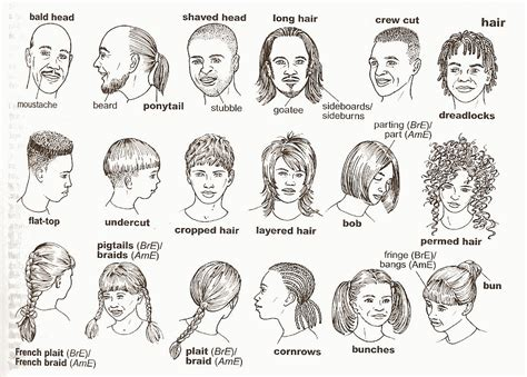 hair style esl your english notes describing people