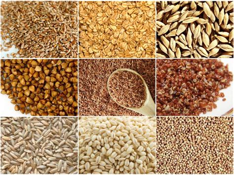 2 exles of whole grains the healthiest whole grains