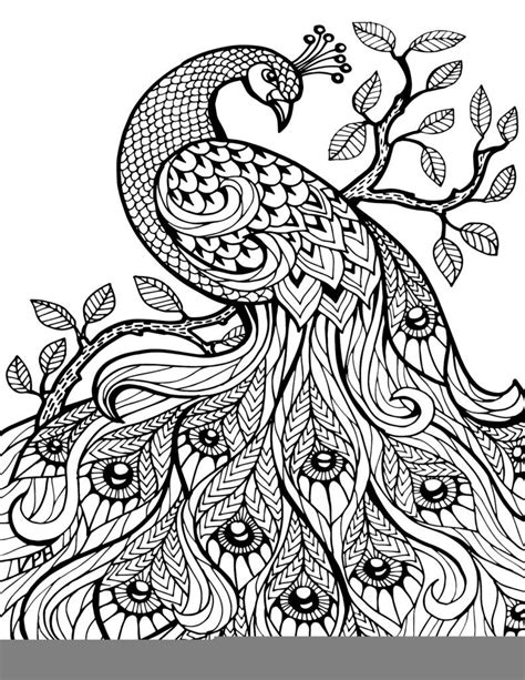 printable coloring pages for adults free free printable paisley coloring pages for adults az