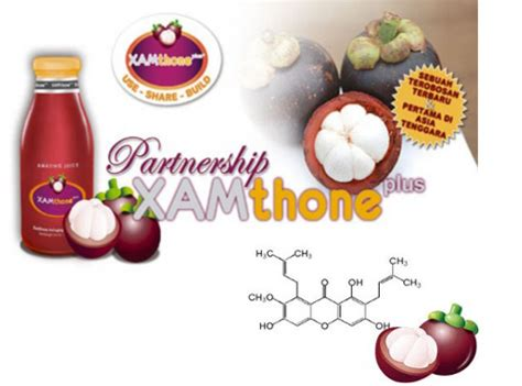 Obat Xamthone obat herbal untuk kanker otak jus manggis xamtone plus 174