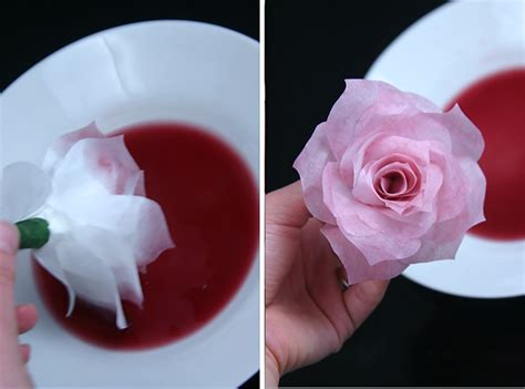 How To Make Paper Flowers From Coffee Filters - diy coffee filter flowers the complete guide