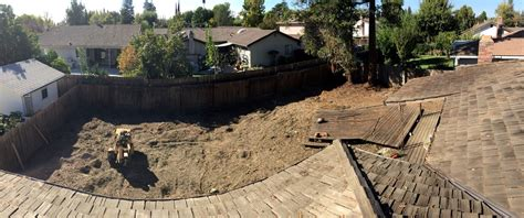 backyard clearing massive backyard clearing lot clearing 183 sacramento s best tree care arborist