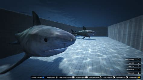 Shark In The sharks in the pool gta5 mods