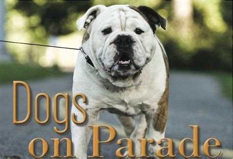 oregonlive puppies parade in hillsboro tuesday oregonlive