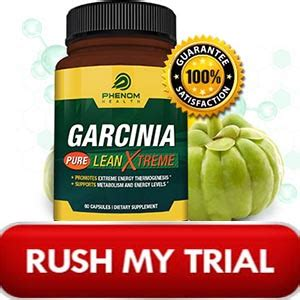Does Yogi Detox Tea Clean Your System by Does Forskolin Work On Garcinia Cambogia Autos Post