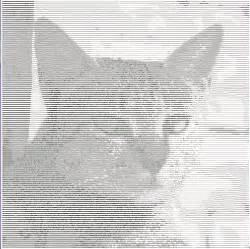 ascii art cat images
