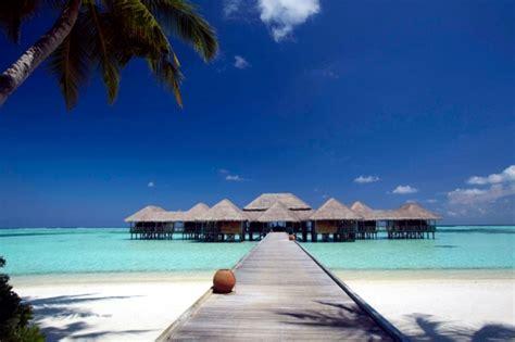 holidays   maldives dream hotel  private beach