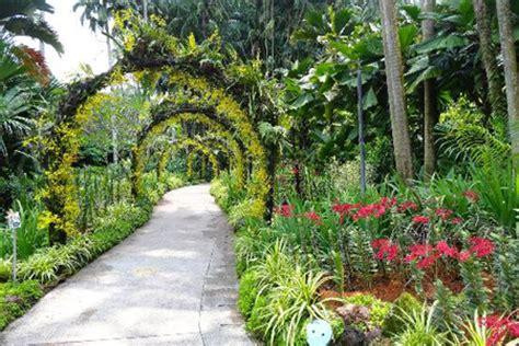 Botanic Garden Orchid Garden Singapore Botanic Gardens Shore Excursions Asia