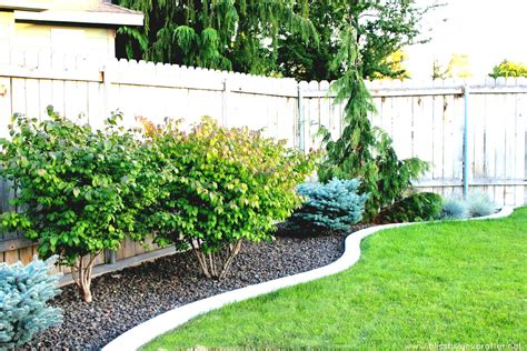 simple landscaping designs backyard on a budget yard
