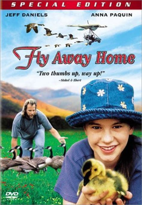House Plans And Home Designs Free 187 Blog Archive 187 Fly Fly Away Home Book Lesson Plans