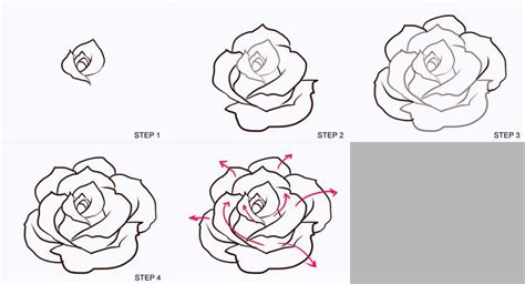 how to draw doodle roses flower drawings in pencil step by step images