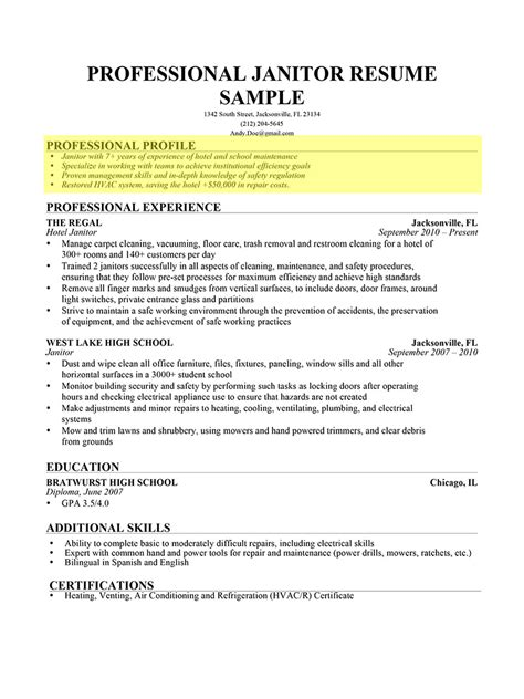 personal profile exles for resumes how to write a professional profile resume genius
