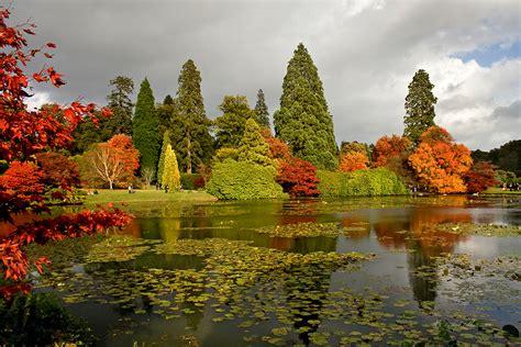 autumn garden sheffield park focused moments