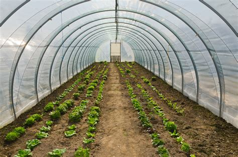 hoop houses hoop house plans best on the internet free