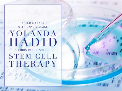 yolanda foster treatment for lymes did stem cell work yolanda foster and stem cells yolanda hadid s lyme disease