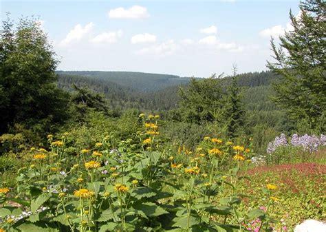 Botanischer Garten Schellerhau Stiftung Naturbewahrung