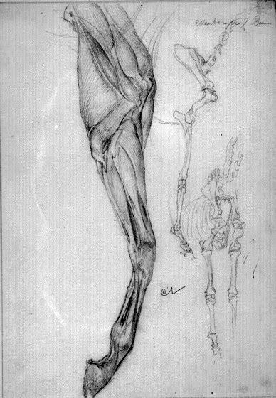 ComJeitoeArte: Biografia do pintor Carl Larsson
