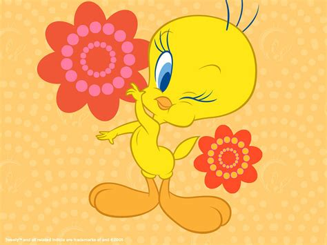 tweety pictures tweety bird wallpaper tweety bird wallpaper 2656468
