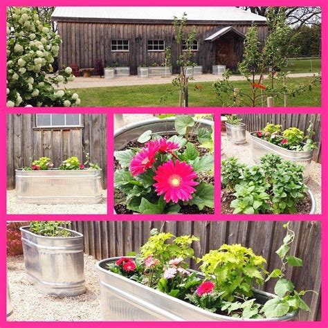 plant a container herb garden garden grit magazine 20 best willow images on pinterest backyard ideas