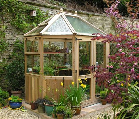 backyard green houses 38 best images about cedar greenhouses on pinterest greenhouses garden sheds and