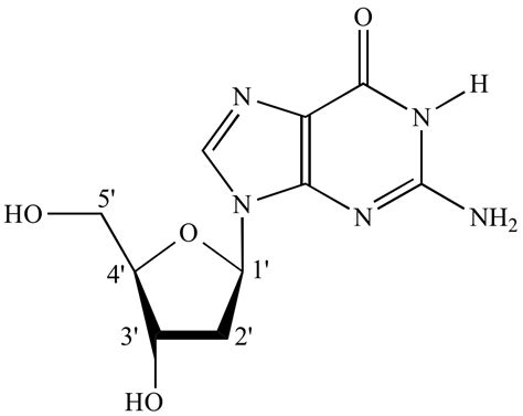 illustrated glossary of organic chemistry illustrated glossary of organic chemistry nucleoside