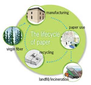 How To Make A Cycle With Paper - are you using less paper the official wisdomjobs