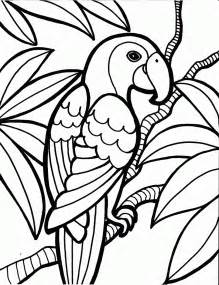 parrot coloring pages coloring now 187 archive 187 bird coloring pages