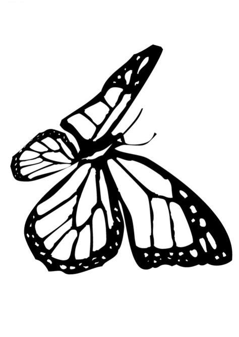Imagenes De Mariposas Monarcas Para Colorear | dibujos para colorear una mariposa monarca es hellokids com