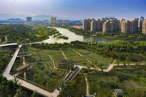 best landscape architects azure s az award winners are announced news archinect