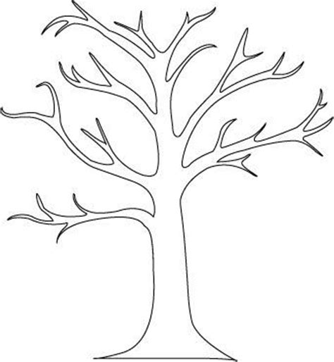 tree template for preschool great tree outline for preschool activity had color