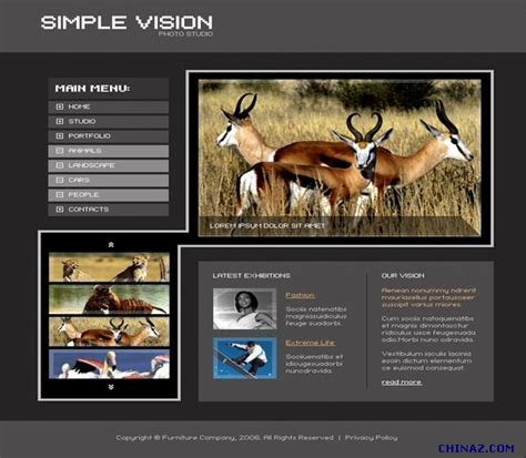 hd website templates free animal personality website templates millions