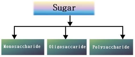 carbohydrates health definition carbohydrates classification structure of carbohydrates