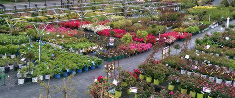 landscape garden center landscape garden center izvipi
