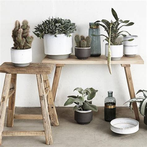 cactus home decor 71 classy cactus interior decor to give your rooms a makeover