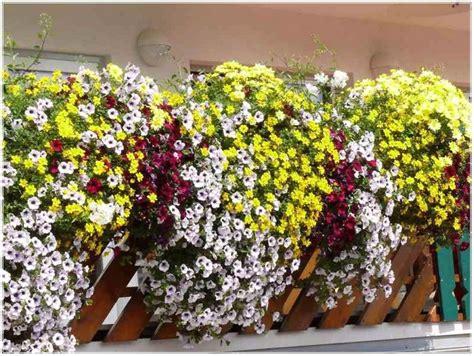 Balkon Bepflanzen Ab Wann by Kr 228 Utergarten Balkon Wann Hauptdesign