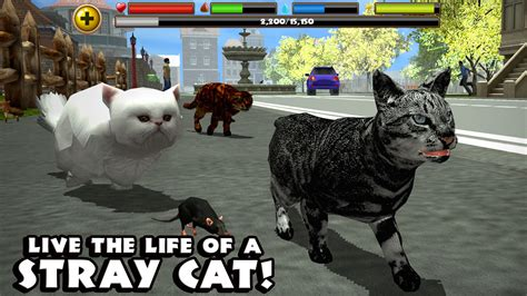 stray simulator stray cat simulator android apps on play