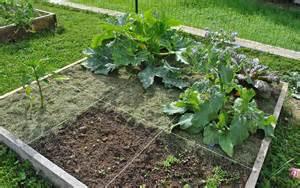 les secrets du potager en carr 233 s my jardin my