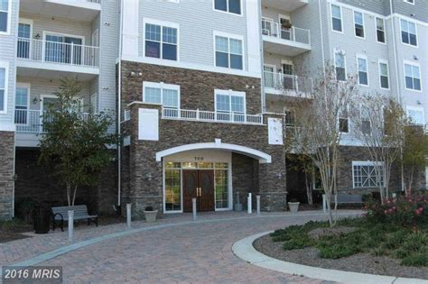 houses for rent in cambridge md 700 cattail cv cambridge md 21613 rentals cambridge md apartments com