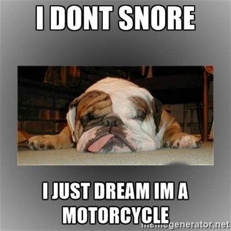 Bulldog Meme - 20 cute and funny bulldog memes sayingimages com