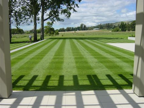 lawn and landscape tips from the turf doctor mowing 101