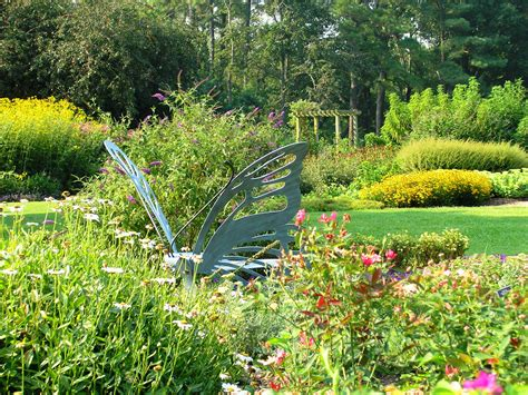 backyard butterfly garden outdoor venues norfolk botanical garden