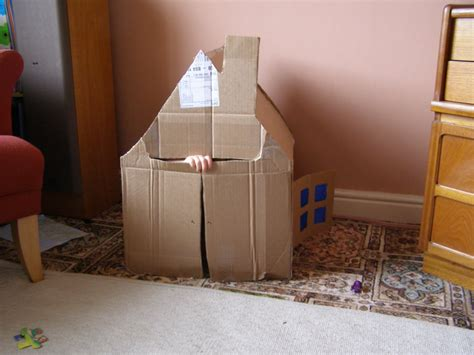 living in a box room in your cardboard box living room fort