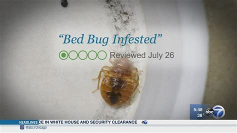 bed bugs don t bring consumer reports don t bring bed bugs home from spring
