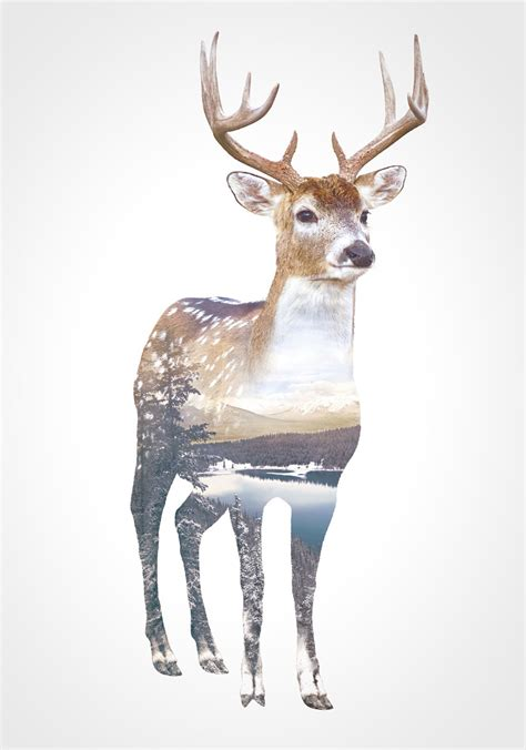 double exposure animal portraits by whatwedo