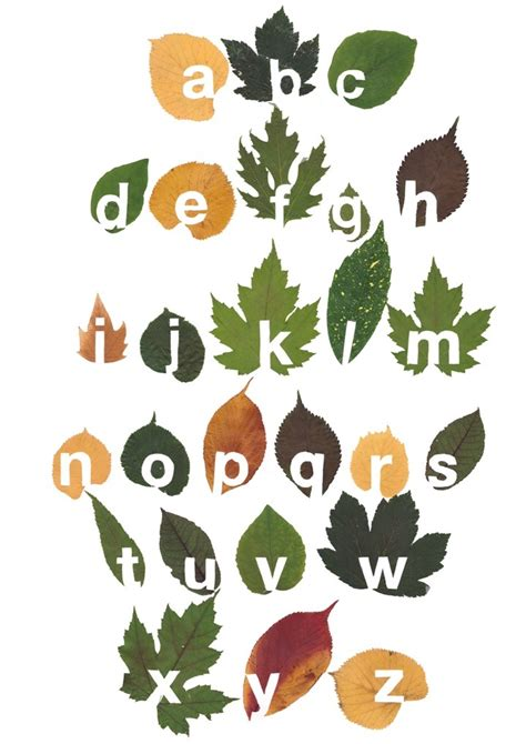 printable leaves with letters leaf alphabet ignant com