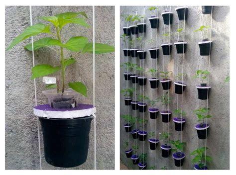 cara membuat hidroponik wick system panduan dan tips mudah menanam cabai vertikultur