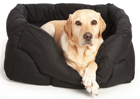 dogs in bed country dog heavy duty rectangular waterproof bed from