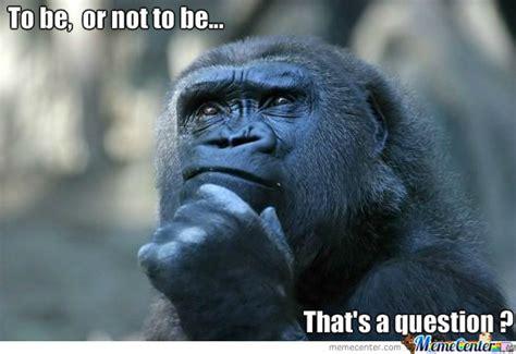 Ape Meme - ape thinker by lather meme center
