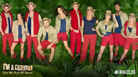 what is im a celebrity about we have 6 crazy thoughts about the i m a celebrity stars
