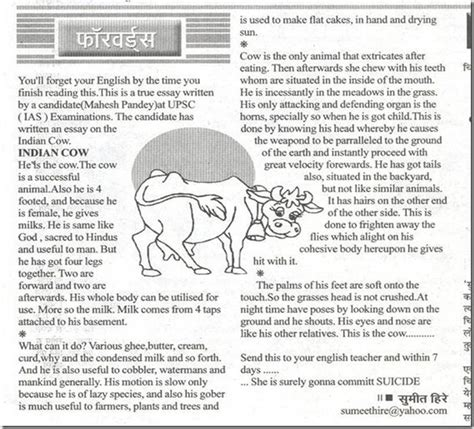 About Cow In Essay by Rajasthan Students Will Now To Study A Letter From Cow Compulsorily In Their